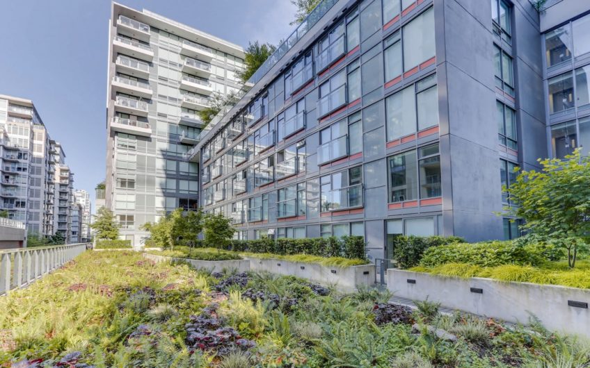 Gorgeous 1 bedroom at Tower Green – Olympic Village